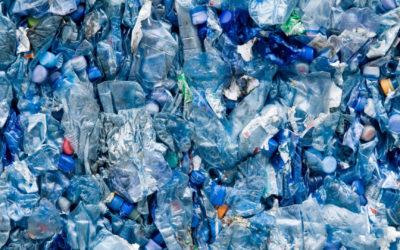 Meno plastica nelle scuole di Milano